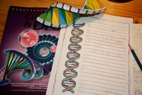 DNA Notebooking Page