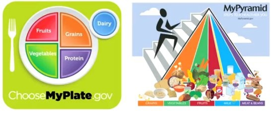 MyPlate and MyPyramid Compared