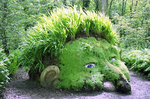 The Giant's Head from the Lost Gardens of Heligan
