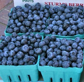 Lots of pints of blueberries at a farmer's market
