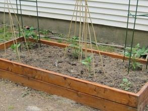 Tiny Garden Planter Box with Tomatoes and Peppers