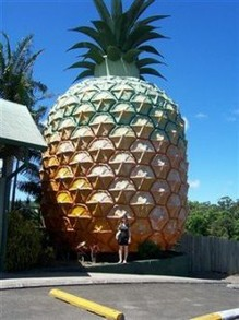 The Big Pineapple in Nambour, Queensland