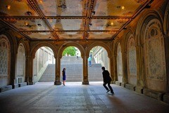 Central Park Fantasy: Urban Landscape Photographers