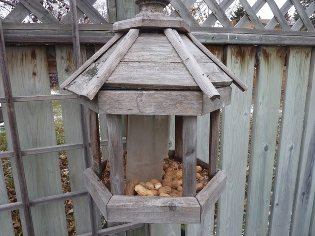 Our Old Bird Feeder