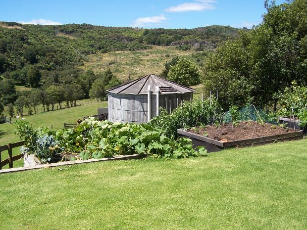 Vegetables - Lawns - And the water Tank