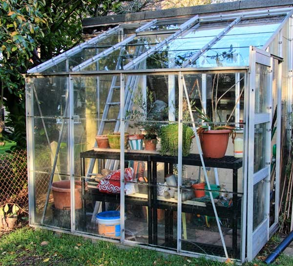 My little greenhouse