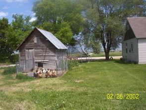 Homesteading and homeschooling Chickens House