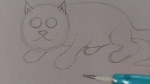 Drawing The Cats Face