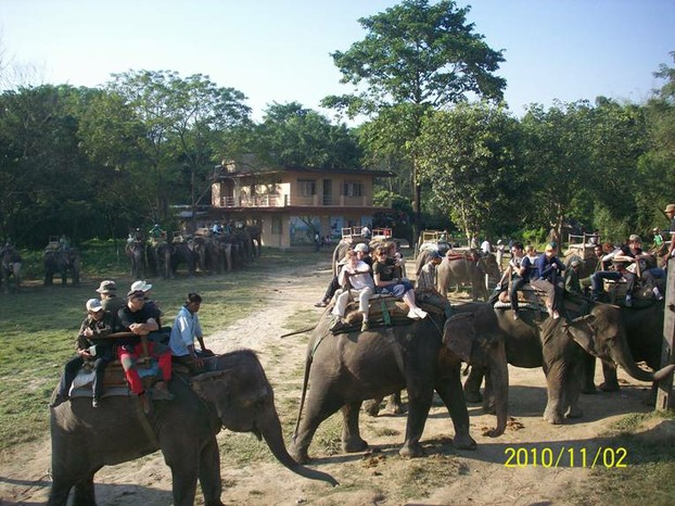 Getting ready for Elephant ride in Chitwan
