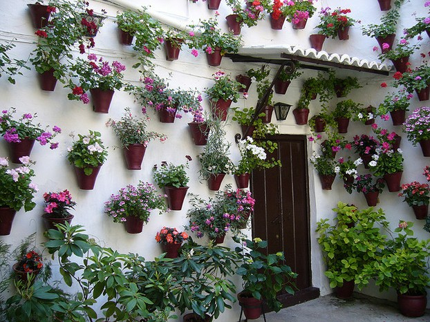 A Interesting Vertical Garden