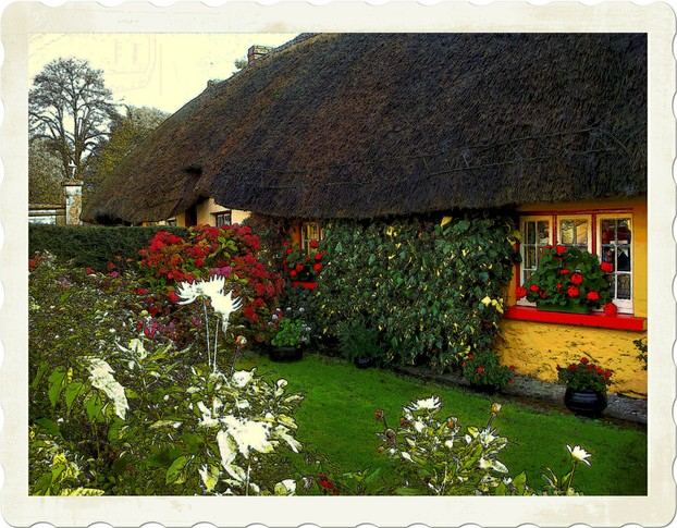 Late October Cottage Garden  located in Adare,Co. Limerick,Irl.