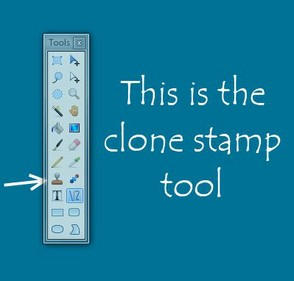 Find the clone stamp tool in your tool box.
