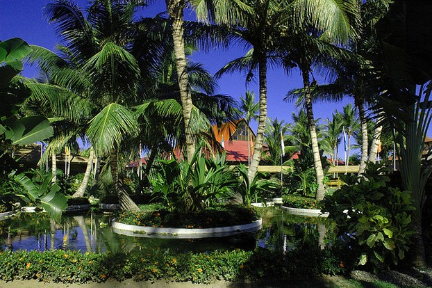 A Tropical Garden at the Grand Palladium Palace in Punta Cana, Dominican Republic
