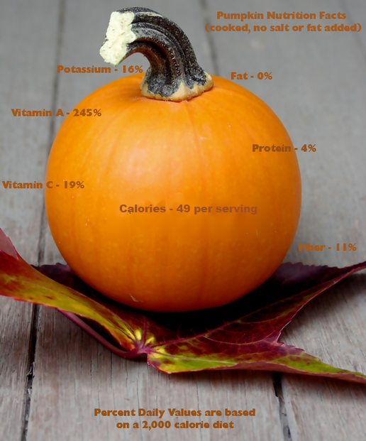 Pumpkin Nutrition Values