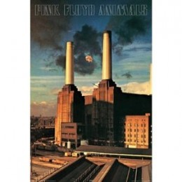 Pink Floyd 'Animals' Poster (Now Rare)