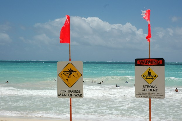 Warning signs posted at Waimanalo Beach