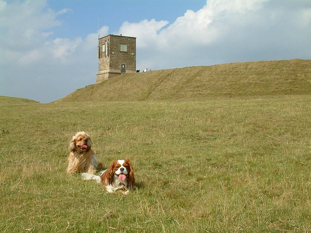 Image: Bredon Hill.  It's a hill.