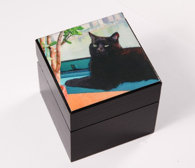 Lazy Afternoon Cat Art Wooden Keepsake/Memory Boxes