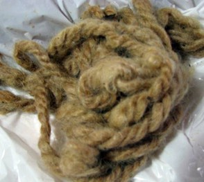 Tallow Tree Dyed