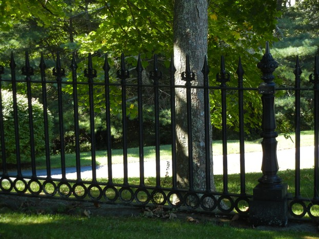 Our Wrought Iron Fencing