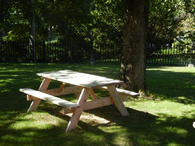 Wooden Picnic Table in Our Backyard