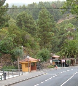 El Pinalete - a village in the mountains and forests