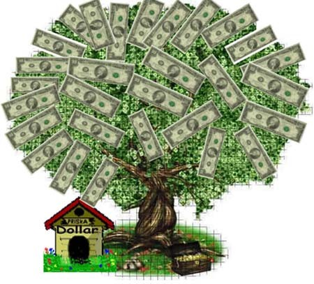 Money Tree (seed result)