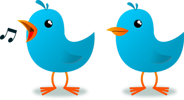 Pair of twittering birds