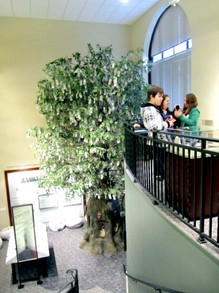 Museum Balcony and Money Tree