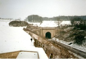 Box Hill Tunnel Entrance and Landscape