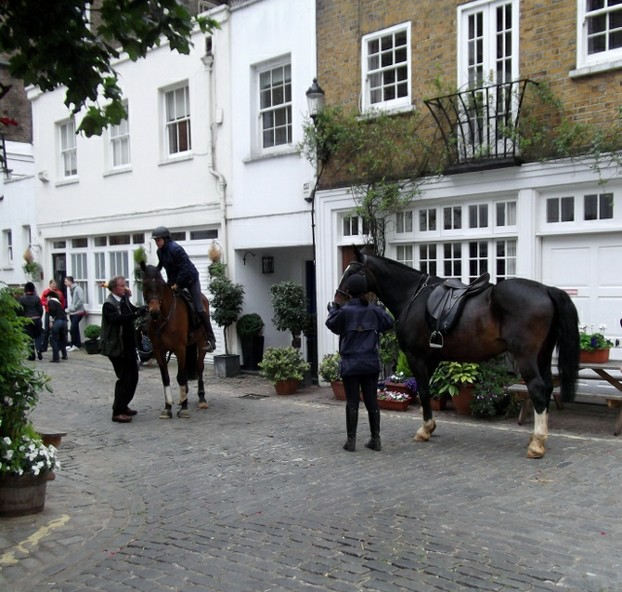 In a quiet mews we find horses in the middle of London!
