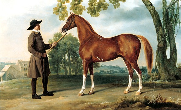 Lord Grosvenor's Arabian Stallion, born 1767, painted by George Stubbs.