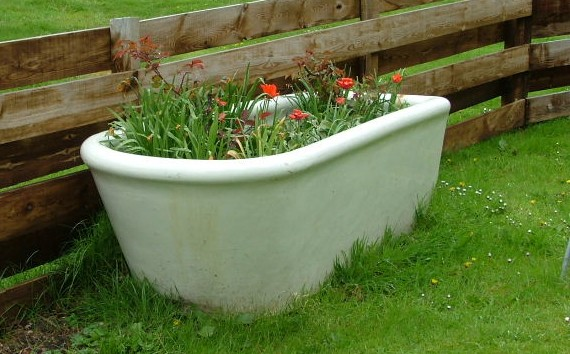 Old bathtub put to good use in Great Britain