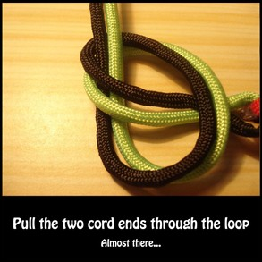 Pull the cord ends through the loop