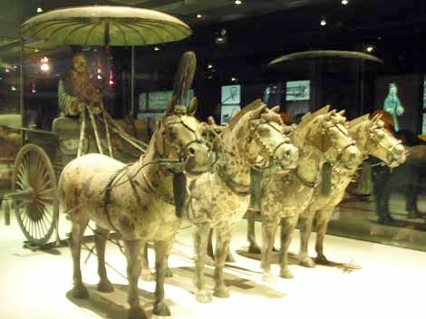 Chinese Qin Dynasty leopard chariot horses