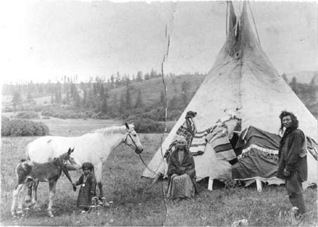 A Nez Perce fewspot leopard mare with blanket foal