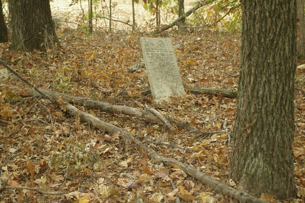 old grave in woods
