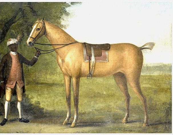 Palomino Racehorse painted by John Wootton