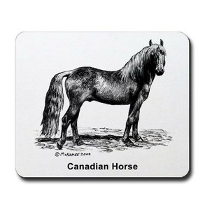 Canadian Horse Mousepad