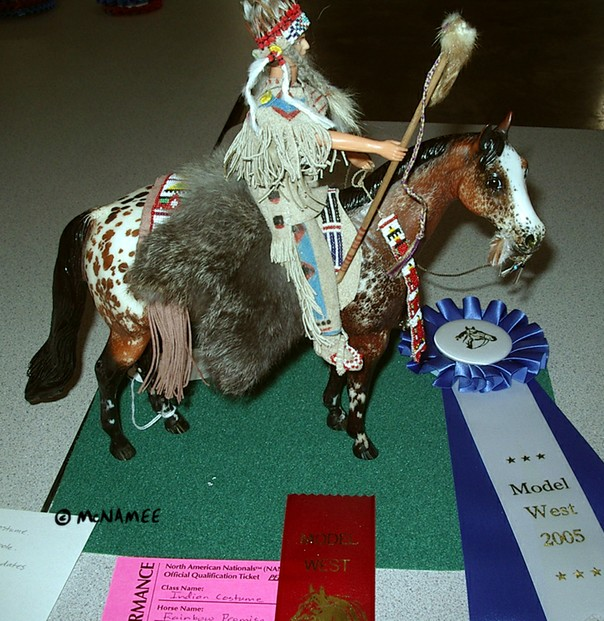 Winning Indian Costume entry. Horse customized by Terry McNamee, costume by Lea Sallis.