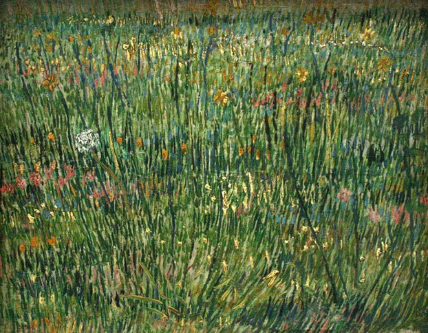 Patch of Grass - van Gogh
