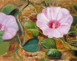 A Sand-Binding Plant of Tropical Shores by Marianne North