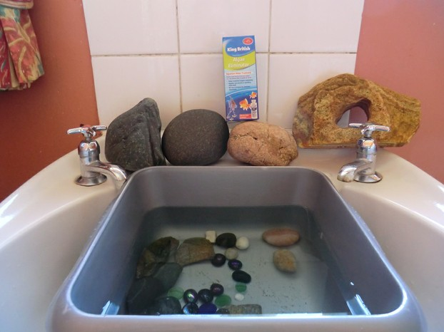 A fast and effortless way to clean your fish tank for Fish tank rock cleaner