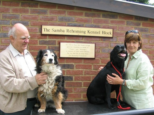 New Kennel Runs, Hearing Dogs, Saunderton