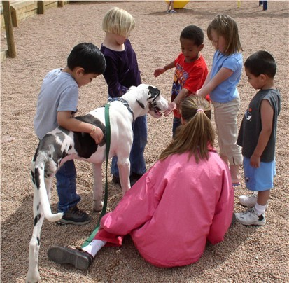A therapy Dog Visiting a School