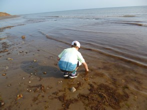 Looking for Fossils at the Waters' Edge