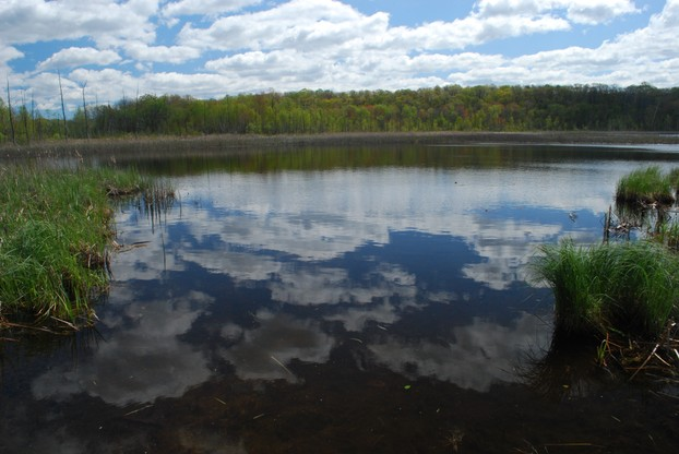 Butler Lake and Flynn's Spring State Natural Area (No. 257), Kettle Moraine State Forest Northern Unit