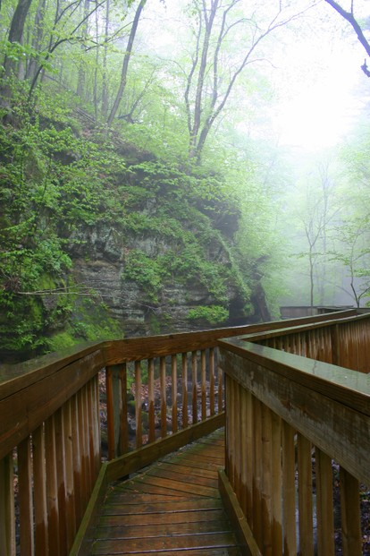 walkway at Parfrey's Glen in May