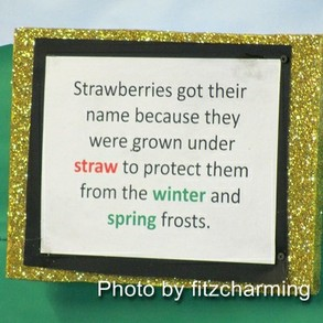 Strawberry name origin