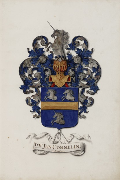 Jan Moninckx 1697 rendering of Commelijn family heraldic arms to honor Jan Commelijn, co-commissioner of Jan's artistry